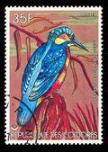 COMORES - CIRCA 1986 — Stockfoto