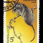 Постер, плакат: USSR CIRCA 1985