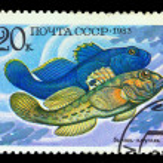 USSR - CIRCA 1983 — Stock Photo #7132135