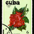 Royalty-Free Stock Photo: CUBA - CIRCA 1978