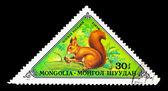 MONGOLIA- CIRCA 1973 — Stock Photo