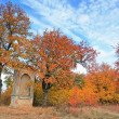 Autumnal scenery — Stock Photo