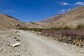 The road in Pamirs — Stock Photo