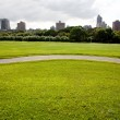 Green field and the city — Stock Photo