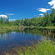 Stock Photo: Marsh in Quetico