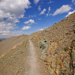 Stock Photo: Alpine trail in wilds