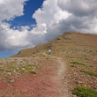 Stock Photo: Heading down alpine trail