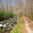 Trail along a river - Stock Photo