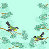 Titmouse on pine branch — Stock Vector