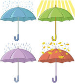 Paraguas, establecer — Foto de Stock
