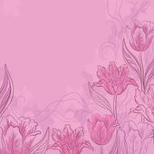 Flowers tulips on a pink — Stock Photo
