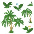 Palm trees, flowers and grass - Stock Vector
