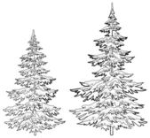 Christmas trees under snow, contours — Stock Photo