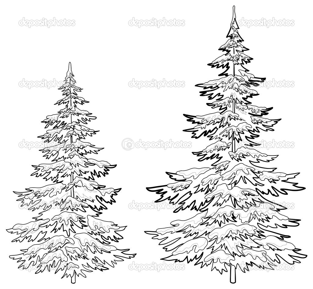 Christmas Trees Under Snow Contours Stock Photo