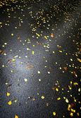 Wet asphalt with bright yellow autumnal leaves — Stock Photo