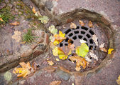 Drainage hatch in the autumnal park — Stock Photo