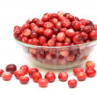 Cranberries in a glass bowl — Stock Photo