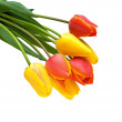 Bouquet of tulips on a white background — Stock Photo