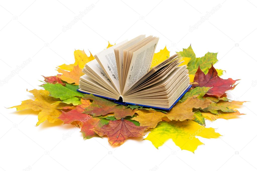 Open book and autumn maple leaves isolated on white background — Stock Photo #7008316