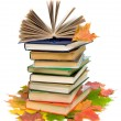 Stock Photo: Open book on a pile of books closeup and autumn maple leaves on