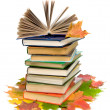 Open book on a pile of books closeup and autumn maple leaves on - Stok fotoğraf