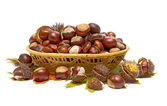 Basket full of chestnuts and autumnal leaves — Stock Photo