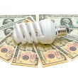 Stock Photo: Energy saving light bulb and banknotes on a white background