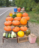 Trade in vegetables at road — Stock Photo