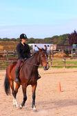 Jinete joven guapa en una competencia de equitación — Foto de Stock