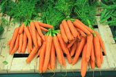 Bunches of fresh carrots on a market stall — Stock Photo
