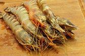 Big fresh tiger prawns, king prawns, shrimp — Stock Photo