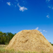 Stack of straw — Stock Photo #6942941