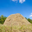 Stock Photo: Stack of straw