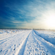 Rural road under snow — Stock Photo #7199943