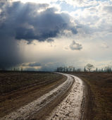Dramatic sky over field with dirty road — Stock Photo