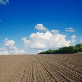černý zorané pole pod modrou oblohou — Stock fotografie