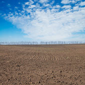 Black ploughed field under deep blue sky — Stock Photo