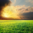 Sunset in dramatic sky over green field — Stock Photo #7953257