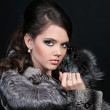 Fashion Winter beauty in fur coat over black — Stock Photo #7402381