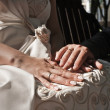 Hands with rings of married woman and man - Stock Photo