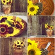 Royalty-Free Stock Photo: Autumn themed sunflower collage.