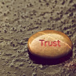 "Inspirational stone with ""Trust""on thin ice. — Stockfoto"