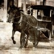 Textured horse and buggy being driven. — Stock Photo