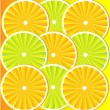 Citrus fruit background vector — Stock Vector