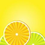 Citrus background — Stock Vector #6811786