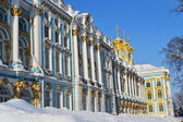 View of the Catherine Palace, winter. — Stock Photo