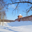 Novgorod citadel. — Stock Photo