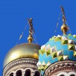 Domes of Church of the Savior on Blood — Stock Photo