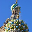 Domes of Church of the Savior on Blood — Stock Photo #7152980