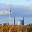 Stock Photo: View of St.Petersburg. Tower and Mosque.